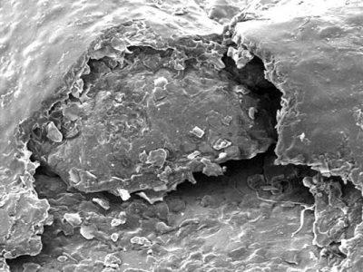 Blasenbildung-auf-Lackoberflaeche
