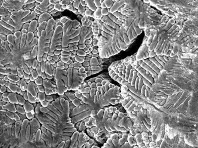 Dendritische-Strukturen